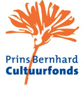 prins_bernhard_cultuurfonds_-_Google_zoeken